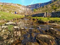 Malham Cove (tubblesnap) Tags: yorkshire dales malham cove limestone plants clint gryke rocks stream stunning beautiful landscape scenery