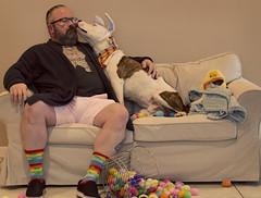 (MomCraptastic) Tags: easter eggs pets dog cat costumes