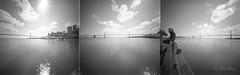SF Bay Bridge (bigbill2006) Tags: pinhole pinholefilm baybridge sanfrancisco bw blackandwhite monchrome realitysosubtle 6x6 fujiacros100 flim cameraobscura