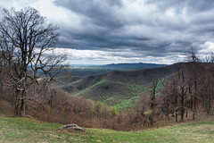 After The Storm (EXPLORE!) (riqwammy) Tags: nature natural storm clouds trees forest mountains outside outdoors sky rockyknob blueridgeparkway virginia brp nikon d750 landscape