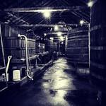 Tahbilk Winery thumbnail