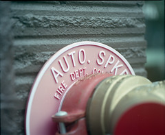 Auto spkr - It was the texture of the painted brick that got me. (Kent C.) Tags: mamiyarb67pros kodakportra400 film filmphotography mediumformat mediumformatfilm 6x7 120film