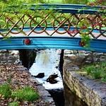 Duck Under the Bridge thumbnail