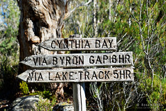 20190419-09-Very old wooden sign (Roger T Wong) Tags: 2019 australia cradlemountainlakestclairnationalpark lakestclair np nationalpark rogertwong sel24105g sony24105 sonya7iii sonyalpha7iii sonyfe24105mmf4goss sonyilce7m3 tasmania bushwalk hike outdoors sign tramp trek walk wooden