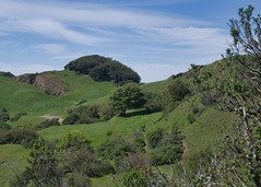 Up to the top (Steve Wedgwood) Tags: sibley sibleyvolcanicpreserve oakland ebrpd ebparksok trees grass hills sky