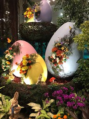 Woodsy Easter at Changi Airport (birdsey7) Tags: easter singapore eggs flowers 2019pad