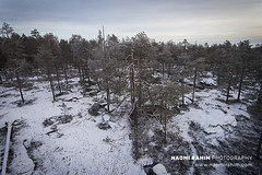 Ounasvaara viewing tower, Rovaniemi (Naomi Rahim (thanks for 4.7 million visits)) Tags: ounasvaara rovaniemi finland finnishlapland europe scandinavia arctic arcticcircle snow hikingtrail 2018 forest trees travel travelphotography nikon nikond7200 clouds horizon 1116mm nature