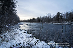 Vaattunkiköngäs river, Finland (Naomi Rahim (thanks for 4.7 million visits)) Tags: rovaniemi finland finnishlapland lapland scandinavia europe 2018 travelphotography travel nikon nikond7200 1116mm longexposure cold winter autumn river water stream blue wanderlust snow ice day afternoon nature landscape trees forest