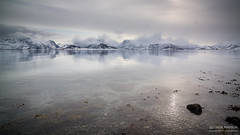 Somewhere in Lofoten (Tintin44 - Sylvain Masson) Tags: letsgotravel 1224 lofoten norvège nuage seascape algues fjord froid k3 mars2019 neige paysage pentax reflection rochers smedvik vestvagoy