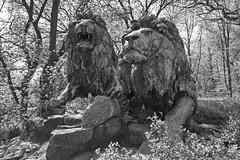 20.04.2019 11-54-0200_1 (TheFan1968) Tags: berlin tierpark friedrichsfelde tier denkmal löwe