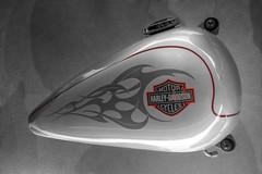 Harley-Davidson Museum (Milwaukee, Wisconsin) (@CarShowShooter) Tags: geo:lat=4303187945 geo:lon=8791653218 geotagged unitedstates usa 400westcanalstreet america building chopper cycle daytrip destination exhibit exhibition exhibitions harley harleydavidson harleydavidsonmotorcycle harleydavidsonmotorcyclemuseum harleydavidsonmotorcycles harleydavidsonmuseum hawg historic historymuseum hog menomoneeriver milwaukee milwaukeetourism milwaukeewi milwaukeewisconsin mke motorbike motorcycle motorcyclearchives motorcyclemuseum museum roadhawg roadhog signaturemotorcycles tourist touristattraction touristdestination transportmuseum travel travelmilwaukee travelphotography travelwisconsin vintagemotorcycle wi wisconsin wisconsintourism wwwharleydavidsoncom americanmotorcycles