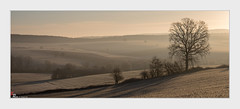 Dans le petit matin (dany.schoulz) Tags: aube leverdesoleil paysage campagne givre mulhausen