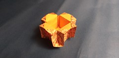 Michael Shannon's Box (georigami) Tags: origami papiroflexia papel paper