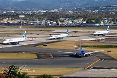 Jetblue Nation in SJU (Hector A Rivera Valentin) Tags: jetblue kingdom airways sju tjsj pilot embraer airbud airbus boeing taxi airport airplane