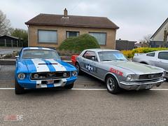 Mustang_Fever_zondag_-13