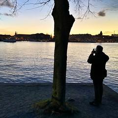 Photographer. (marfis75) Tags: stockholm junibacken night nacht person fotografieren nachtfotografie photographer fotograf knipsen take pictures selfie nightlife sea meer stadt city citylights abend iphone