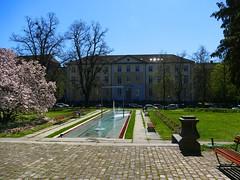 Solothurn Soleure 20. April 2019: Aussicht vom Kunsthaus (Martinus VI) Tags: solothurn solothurner kanton de canton ville stadt y190420 martinus6 martinus6xy martinus vi aare ambassadorenstadt schweiz suisse switzerland svizzera suiza