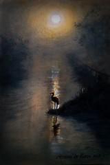 quadro  airone (pupatticantropa) Tags: animali airone lago stagno paesaggio inverno nebbia