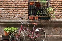 Barrio San Diego | Santiago de Chile (chamorojas) Tags: chamorojas albertorojas callechile fotoblog photoblog santiagodechile semanasanta2019 stgo iphone8 bicycle bike window streetphotography cité