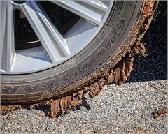 Gotta get a Little Mud on the Tires (A Anderson Photography, over 3.4 million views) Tags: canon tires mud backroads red reddirt goodyear