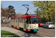 Tram Frankfurt (O) - 2019-20 (olherfoto) Tags: bahn tram tramcar tramway villamos strasenbahn frankfurtoder tatra kt4d