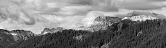 070607536-40 Val Badia, South Tyrol, Italy (Wolfgang_Kraus) Tags: southtyrol altoadige valbadia dolomites pentax smcpentaxfa200mmf28edif panorama mountains forest sky monochrome italy italien piplkan
