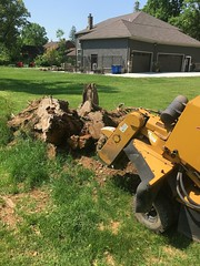 EF0EE67C-4DB3-4C42-B107-9CBEBE17B656 (Lakeview Stump Grinding) Tags: lakeview columbia strongsville stump grinding ohio station north royalton cleveland berea olmsted falls landscaping bay village northeast service grind removal