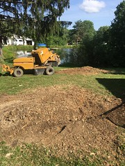 2FCDFF45-E43D-444F-9B8B-7C55F387FE5E (Lakeview Stump Grinding) Tags: lakeview columbia strongsville stump grinding ohio station north royalton cleveland berea olmsted falls landscaping bay village northeast service grind removal