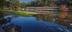 #3189 Royal National Park (Rmonty119) Tags: canon eos r lightroom skylum water royal national park morning