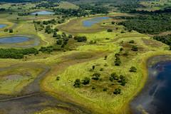 Happy Earth Day (Thelma Gatuzzo) Tags: thelmagatuzzophotography© 2019 pantanal aerial aerialphotography nature lakes landscape
