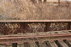 Naked (NJphotograffer) Tags: graffiti graff new jersey nj trackside rail railroad bridge naked adhd ckd crew