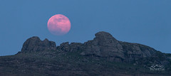 Blood, Sweat and Tears (http://www.richardfoxphotography.com) Tags: haytor dartmoorlandscape dartmoornationalpark moonrise moon lunar nightphotography nightsky panorama bloodmoon