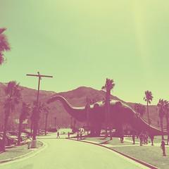 SXQE3750 (f l a m i n g o) Tags: photo app california cabazon dinosaur trip vacation palmsprings zoo oscars restaurant march 2019 desert