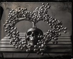 Heart & Skull (negative with New Guy negative collodion) (Blurmageddon) Tags: 4x5 largeformat wetplatecollodion senecaimprovedview 4x5reducingback silversunbeamdeveloper collodionnegative ammoniumthiosulfate stilllife alternativeprocess newguynegativecollodion epsonv700 skull heart