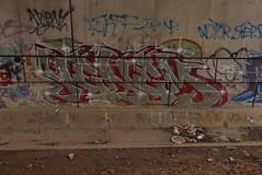 VENEM (TheGraffitiHunters) Tags: graffiti graff spray paint street art colorful nj new jersey trackside wall venem