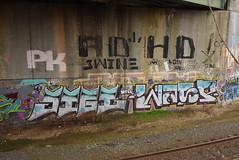 PK ADHD SWINE JIGL WASP (TheGraffitiHunters) Tags: graffiti graff spray paint street art colorful nj new jersey trackside wall pk adhd crew swine jigl wasp
