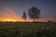 Before sunrise (Sebo23) Tags: sunrise sonnenaufgang licht landscape landschaft light lichtstimmung nature naturaufnahme natur morgenstimmung morninglight morgenlicht moody canoneosr canon16354l
