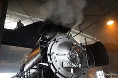 BR 50 3648-8 (giver40 - Sergi) Tags: dresden dampflok steamlocomotive locomotora de vaporrotonda vapor steam dampfloktreffen sajonia drehscheibe br50