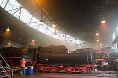 BR 52 8079-7 (giver40 - Sergi) Tags: dresden dampflok steamlocomotive locomotora de vaporrotonda vapor steam dampfloktreffen sajonia drehscheibe