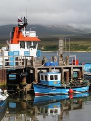 Argyll & Islay 2005 238