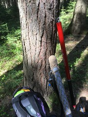 113/19/365 Equipment (Puste66blume) Tags: angeln geocaching equipment 365onephotoeachday