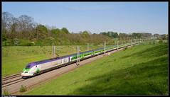 SNCF TMST 3213/3224 @ Enghien (Steven De Haeck) Tags: enghien edingen hainaut henegouwen belgië belgique lijn1 izy sncf thalys tmst transmanchesupertrain brussel bruxelles parijs paris hsl hst hogesnelheidstrein highspeedtrain lgv