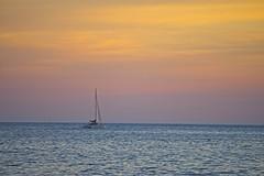 Veleiro (mcvmjr1971) Tags: purple nikon d800e lens sigma 100300 f4 ex mmoraes sunset por do sol praia de piratininga ceu vermelho red sky clouds nuvens silhueta