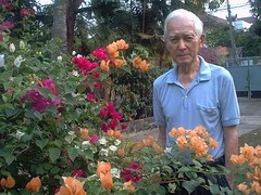 In Memoriam (the foreign photographer - ฝรั่งถ่) Tags: therd suprichakorn our house bougainvilea bangkhen bangkok thailand memoriam carl springer