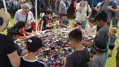"""18 (""""Big Daddy"""" Nelson) Tags: leahi hawaii waikiki aquarium fish lego event afol"""