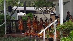 """24 (""""Big Daddy"""" Nelson) Tags: leahi hawaii waikiki aquarium fish lego event afol"""