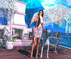 I don't need anything else (Silvia Galtier) Tags: noor jaradnoor sl silviagaltier alananazareowyn secondlife bento blog event vanityevent vanity pose decor furniture aphrodite roost doux maitreya model