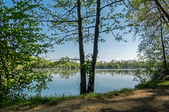 Blick auf den Hitdorfer See (KL57Foto) Tags: 2019 april badesee germany hitdorffrühling kl57foto landschaft leverkusen leverkusenhitdorf nrw nordrheinwestfalen omdem1 olympus see