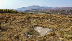 Symbol Stone (prajpix) Tags: stone boulder archaeology pictish relic rock art artwork ritual mystery symbol heather moorland mountains hills sutherland highlands scotland picts enigma history neolithic ancient