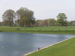 Stripy Grass (amandabhslater) Tags: northamptonshire boughtonhouse garden grass trees house